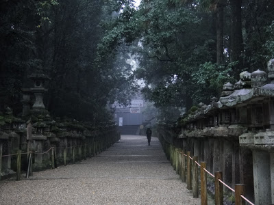 Nara's Haunted Primeval Forest